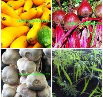 Благоприятные посадочные дни в апреле: Лунный календарь посадки овощей, цветов, ягод