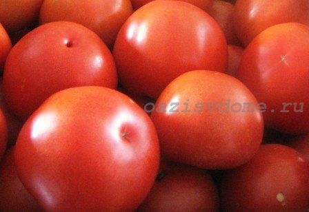 Лучшие подкормки для помидоров в теплице и открытом грунте: народные средства и органика