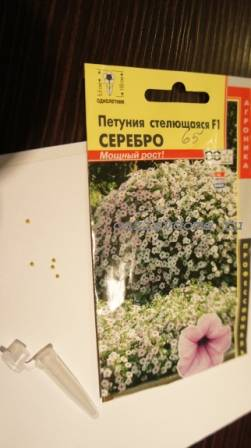 Гранулированные семена петунии