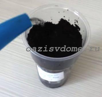 Подготовка стаканчиков с почвой для пикировки петунии