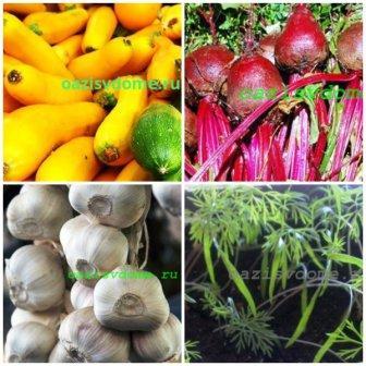 Лунный посевной календарь на апрель для садоводов и огородников