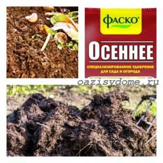 Что внести в почву осенью: удобрения и добавки для повышения плодородия земли