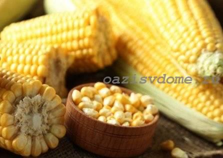 Выращивание кукурузы на даче: какую, когда и как сажать для хорошего урожая