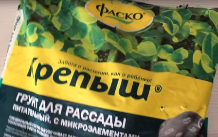 Грунт для выращивания рассады петунии