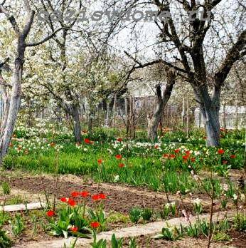 Лунный календарь садовода на месяц апрель