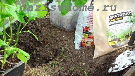 Удобрения для внесение в лунку при посадке перца
