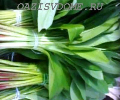 3 рецепта салатов из черемши