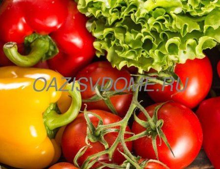 Лунный посевной календарь для томатов и перцев