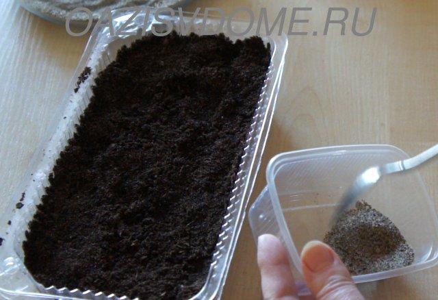 Семена петунии с песком