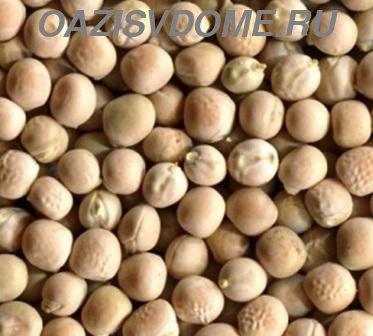 Как замочить и прорастить семена гороха