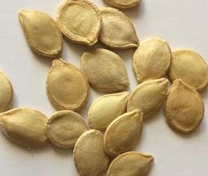 Семена патиссонов