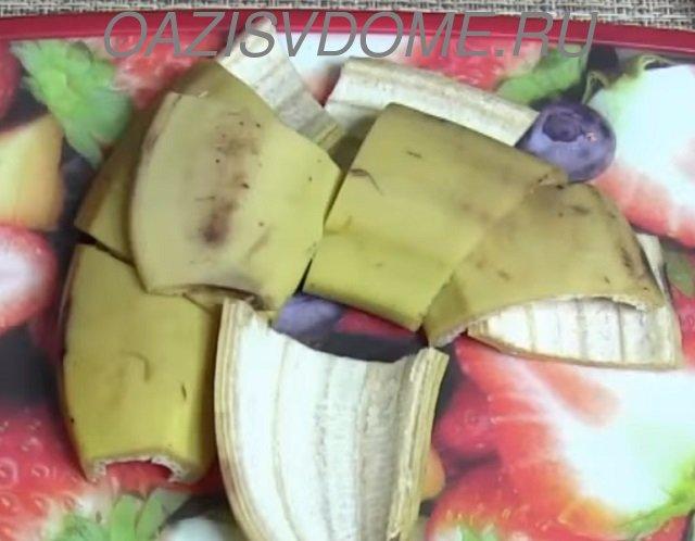 Кожура бананов как удобрение для растений