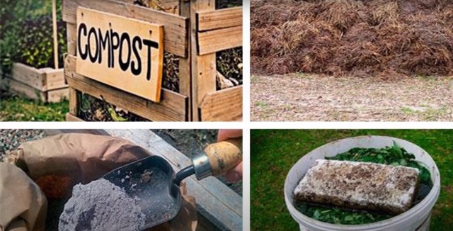 Органические удобрения для подкормки растений