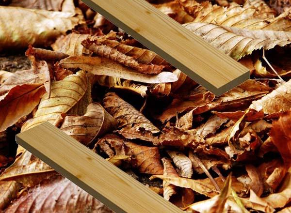 Укрытие луковиц на зиму сухой листвой
