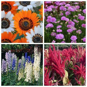 Какие цветы сажать на рассаду в апреле