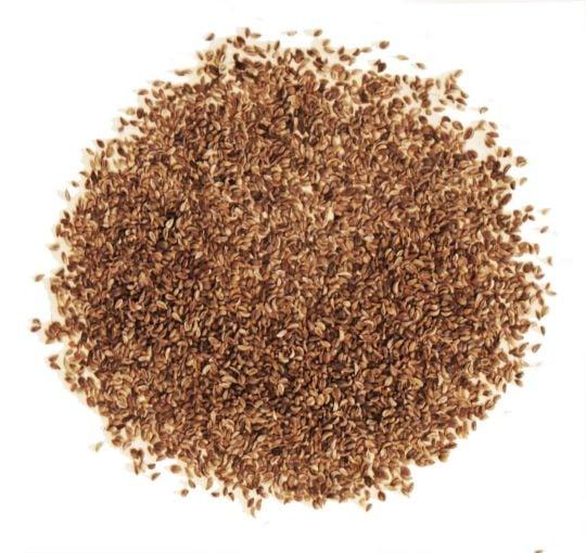 На фото семена петрушки