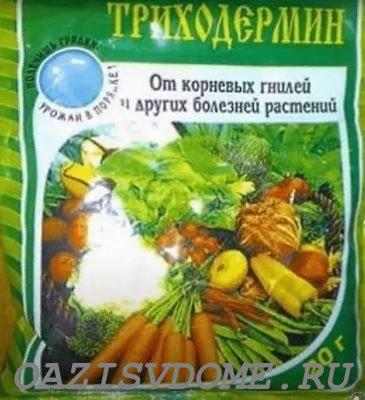 Применение препарата Триходермин для обработки растений и почвы в огороде