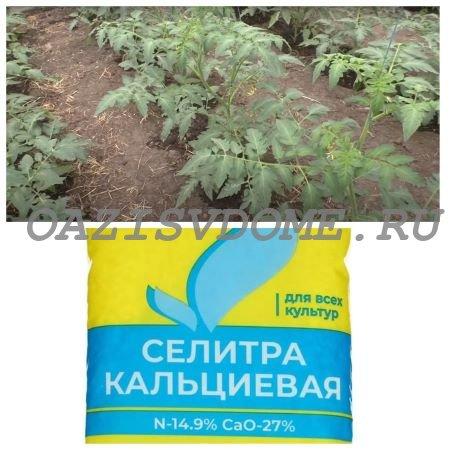 Подкормка помидоров удобрением Кальциевая селитра