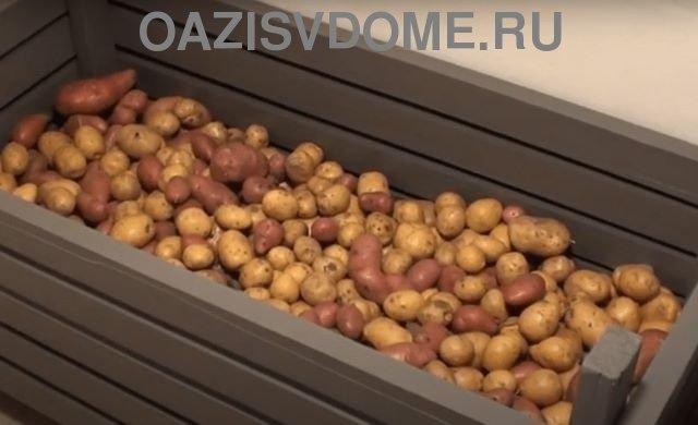 Ларь для хранения картошки