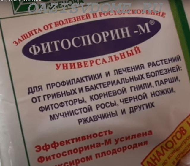 Паста биофунгицида Фитоспорина-М