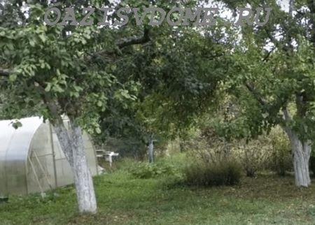 Чем подкормить яблони и груши после сбора урожая осенью: варианты удобрений для хорошей зимовки