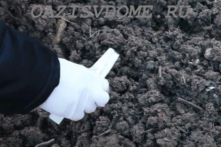 Подзимние посадки в Сибири