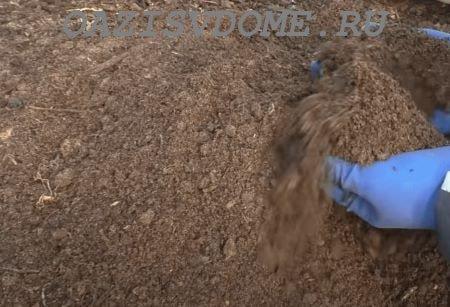 Рассадная почва своими руками